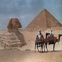 Arabian Life
